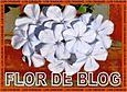 "Premio""Flor de blog"""