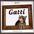 Gatti: foto e aforismi