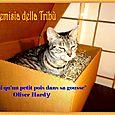 Artemisia  Gentileschi della Tribù