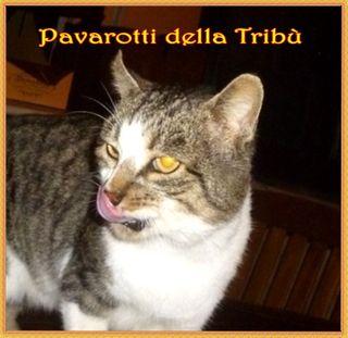 Pavarotti lnome- Copia
