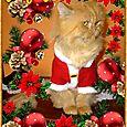 Matisse chat-noel