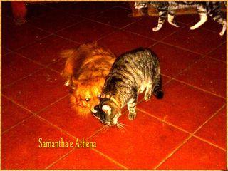 Athena  e samantha 1