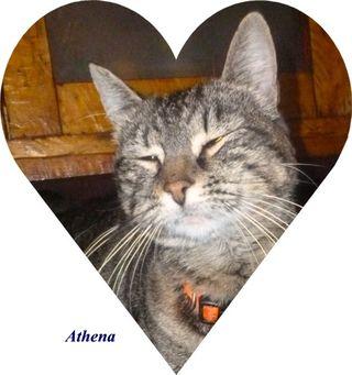 Athena  1 piano