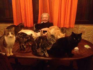 Io e gatti  aprile 15 bella