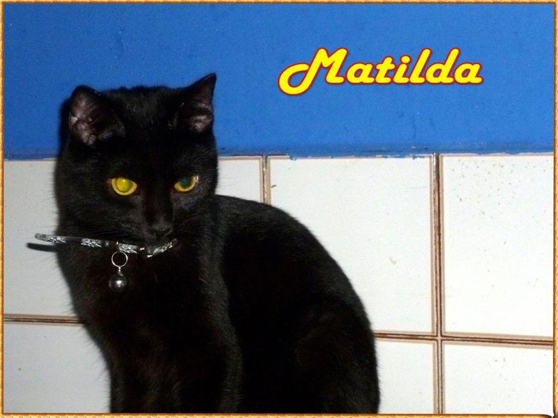 Matilda nome