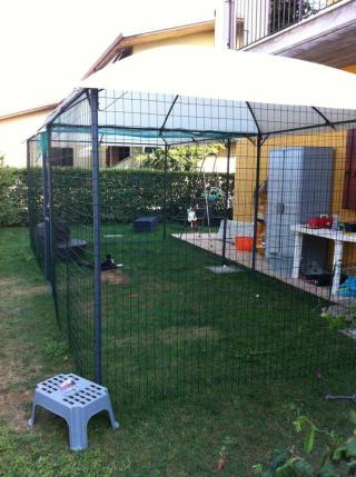 Recinzione Giardino Per Gatti.Jardin Securise Pour Les Chats Giardino Messo In Sicurezza Per I