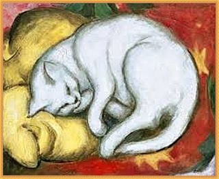 4 marc franz-gatto bianco su cuscino giallo