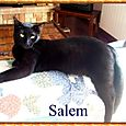 Salem (2)
