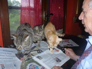 7 giovanni twist mireille boris giornale
