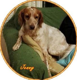 Jenny nome