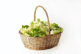 8 insalata