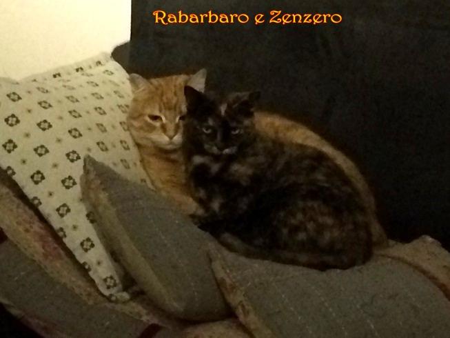 IMG_2663 Rabarbaro e Zenzero