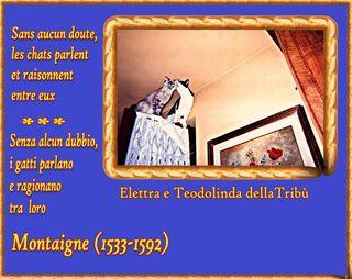 14 AFORISMA ELETTRA TEODOLINDA