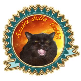Salem amicizia