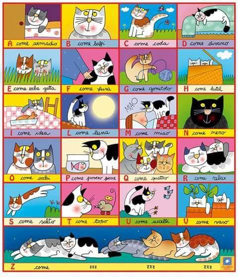 Alfabeto e gatti