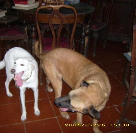 Ottavia di Maurizio con Ofelia
