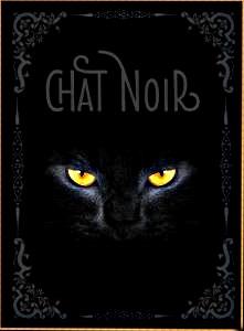 Chat-Noir- Nathalie Semenuik