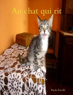 AU CHAT QUI RIT - e-book