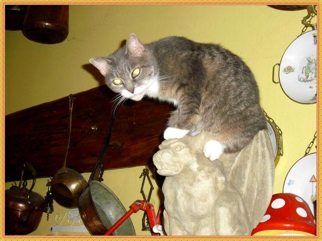 Cleo e la gargoyle