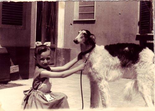 Bissi 1954
