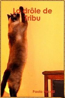 E-book La drôle de Tribu - € 7.50