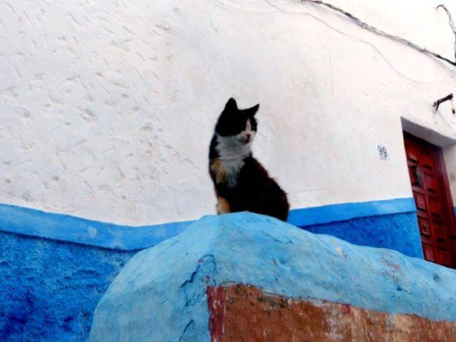 Nel quartiere ebreo a Rabat