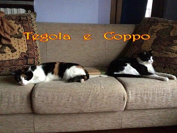 Tegola e  Coppo