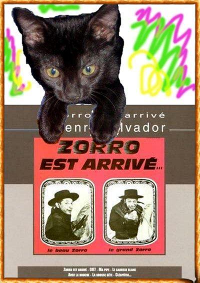 Zorro est arrivé