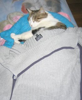 Oceanino e la coperta di Linus