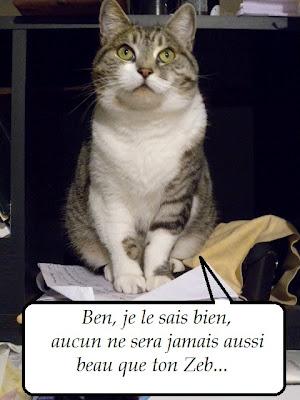 Chipie la Bretonne