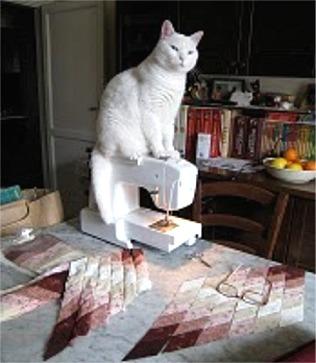 Pallina sulla  macchina per cucire